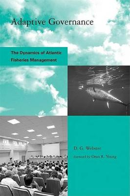Adaptive Governance: The Dynamics of Atlantic Fisheries Management - Global Environmental Accord: Strategies for Sustainability and Institutional Innovation (Paperback)