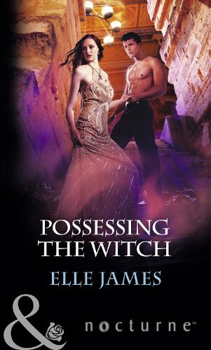 Possessing the Witch (Paperback)