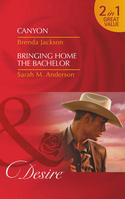Canyon - Mills & Boon Desire (Paperback)