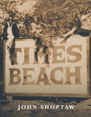 Times Beach - Notre Dame Review Prize (Paperback)
