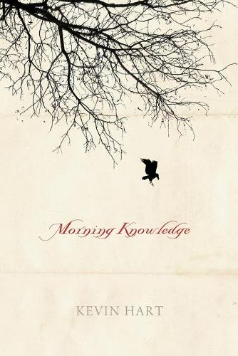 Morning Knowledge (Paperback)