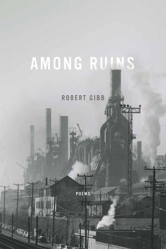 Among Ruins - Ernest Sandeen Prize Poetry (Hardback)