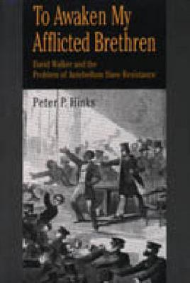 To Awaken My Afflicted Brethren: David Walker and the Problem of Antebellum Slave Resistance (Hardback)