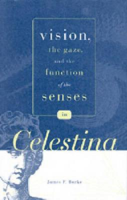 "Vision, the Gaze, and the Function of the Senses in ""Celestina"" - Studies in Romance Literatures (Hardback)"