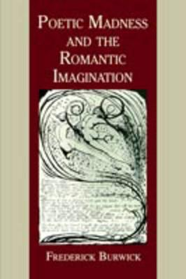 Poetic Madness and the Romantic Imagination (Paperback)