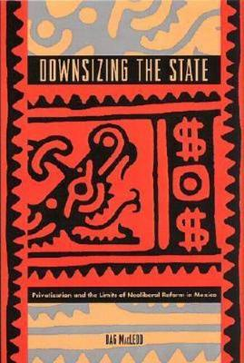 Downsizing the State: Privatization and the Limits of Neoliberal Reform in Mexico (Paperback)
