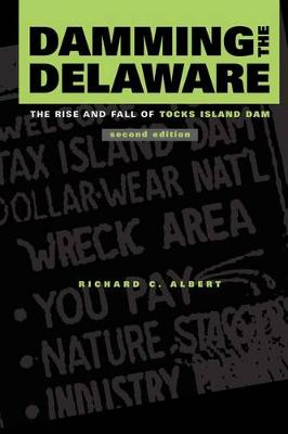 Damming the Delaware: The Rise and Fall of Tocks Island Dam (Paperback)