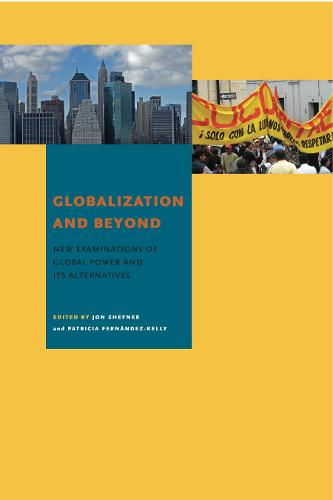 Globalization and Beyond: New Examinations of Global Power and Its Alternatives (Paperback)