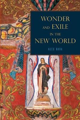 Wonder and Exile in the New World (Paperback)