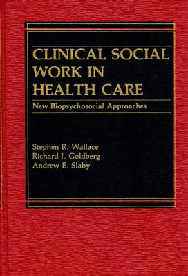 Clinical Social Work in Health Care: New Biopsychosocial Approaches (Hardback)