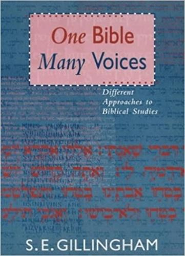 One Bible, Many Voices: Different Approaches to Biblical Studies (Paperback)