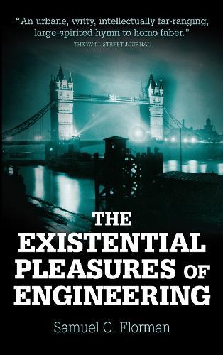 Existential Pleasures of Engineering (Paperback)