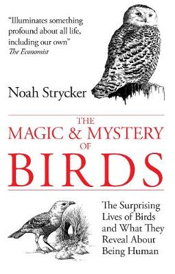 The Magic and Mystery of Birds: The Surprising Lives of Birds and What They Reveal About Being Human (Paperback)