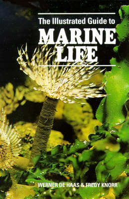 The Illustrated Guide to Marine Life - Illustrated Guide (Hardback)