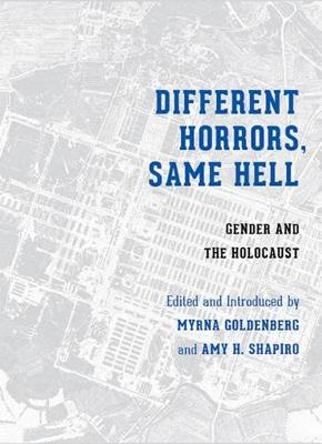 Different Horrors, Same Hell: Gender and the Holocaust - Stephen S. Weinstein Series in Post-Holocaust Studies (Hardback)