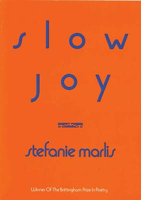 Slow Joy (Paperback)