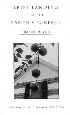 Brief Landing on the Earth's Surface (Hardback)