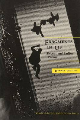 Fragments in Us: Recent and Earlier Poems (Hardback)