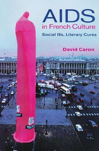 AIDS in French Culture: Social Ills, Literary Cures (Hardback)