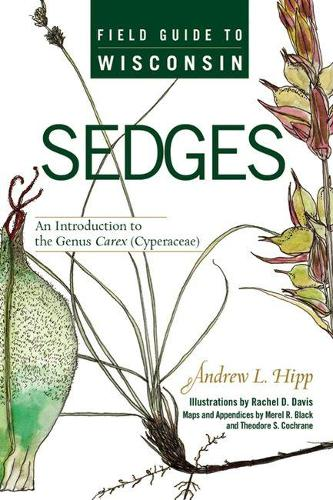 Field Guide to Wisconsin Sedges: An Introduction to the Genus Carex (Cyperaceae) (Paperback)