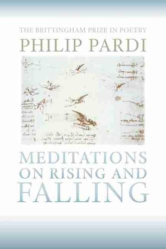 Meditations on Rising and Falling (Paperback)
