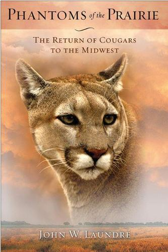 Phantoms of the Prairie: The Return of Cougars to the Midwest (Paperback)