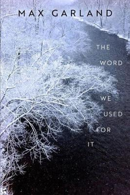 The Word We Used For It - Wisconsin Poetry Series (Paperback)