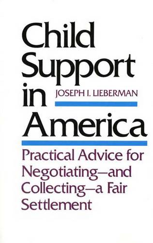 Child Support in America: Practical Advice on Negotiating and Collecting a Fair Settlement (Paperback)