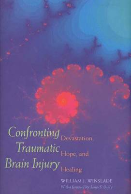 Confronting Traumatic Brain Injury: Devastation, Hope and Healing (Hardback)