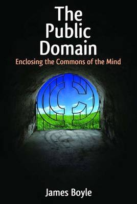 The Public Domain: Enclosing the Commons of the Mind (Hardback)