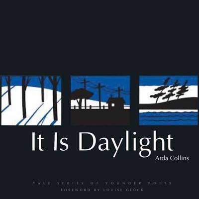 It is Daylight - Yale Series of Younger Poets (Hardback)