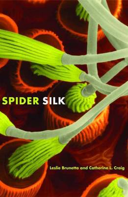 Spider Silk: Evolution and 400 Million Years of Spinning, Waiting, Snagging, and Mating (Hardback)