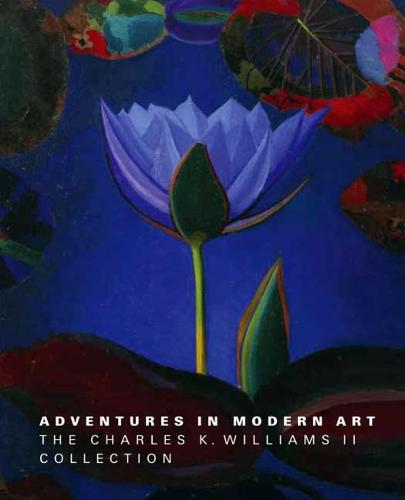 Adventures in Modern Art: The Charles K. Williams II Collection (Hardback)