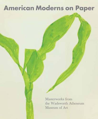 American Moderns on Paper: Masterworks from the Wadsworth Atheneum Museum of Art (Hardback)