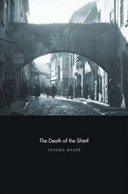 The Death of the Shtetl (Hardback)