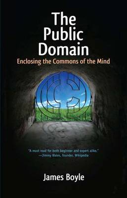 The Public Domain: Enclosing the Commons of the Mind (Paperback)