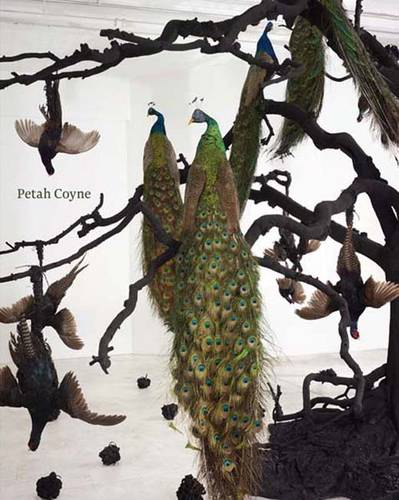 Petah Coyne: Everything That Rises Must Converge (Paperback)