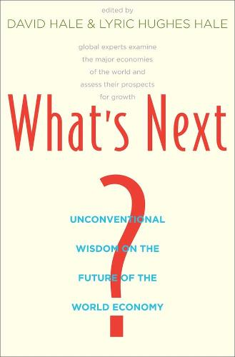 What's Next?: Unconventional Wisdom on the Future of the World Economy (Paperback)