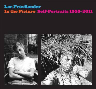 In the Picture: Self-Portraits, 1958-2011 (Hardback)