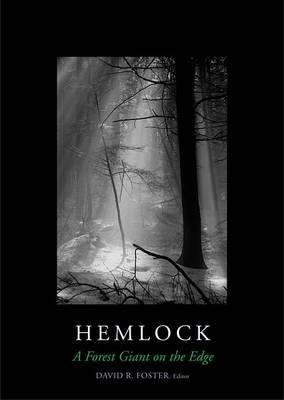 Hemlock: A Forest Giant on the Edge (Hardback)