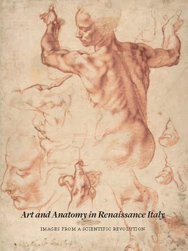 Art and Anatomy in Renaissance Italy: Images from a Scientific Revolution (Paperback)