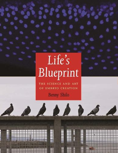 Life's Blueprint: The Science and Art of Embryo Creation (Hardback)