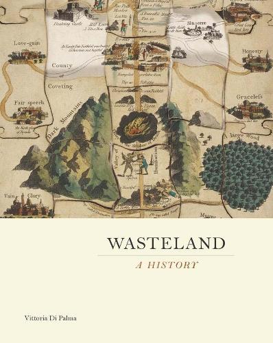 Wasteland: A History (Hardback)