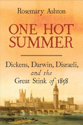 One Hot Summer: Dickens, Darwin, Disraeli, and the Great Stink of 1858 (Paperback)