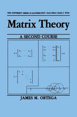 Matrix Theory: A Second Course - University Series in Mathematics (Paperback)