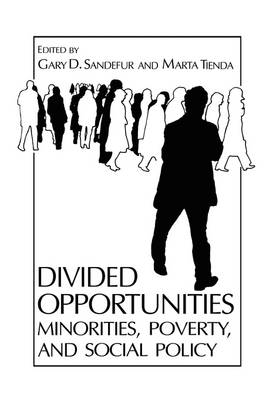Divided Opportunities: Minorities, Poverty and Social Policy - Environment, Development and Public Policy: Public Policy and Social Services (Paperback)
