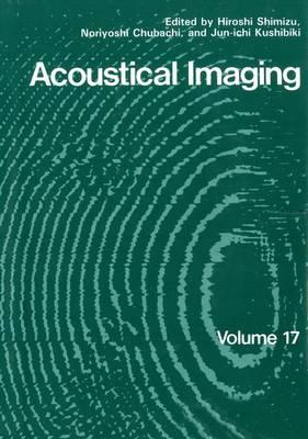 Acoustical Imaging - Acoustical Imaging 17 (Hardback)