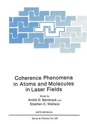 Coherence Phenomena in Atoms and Molecules in Laser Fields: Proceedings of a NATO Advanced Research Workshop Held in Hamilton, Ontario, Canada, May 5-10, 1991 - NATO Science Series B: Physics v. 287 (Hardback)