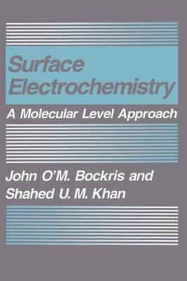 Surface Electrochemistry: A Molecular Level Approach (Hardback)