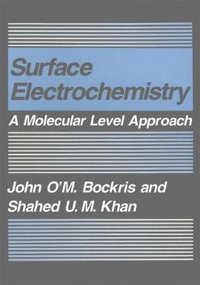 Surface Electrochemistry: A Molecular Level Approach (Paperback)